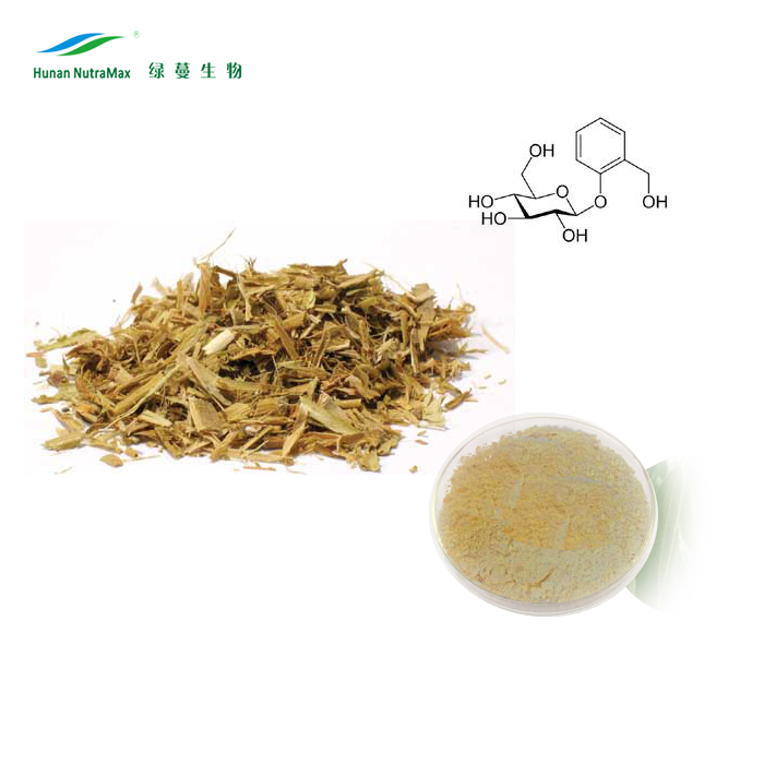 Health Supplement White Willow Bark Extract 15%20%50%95% Salicin Powder