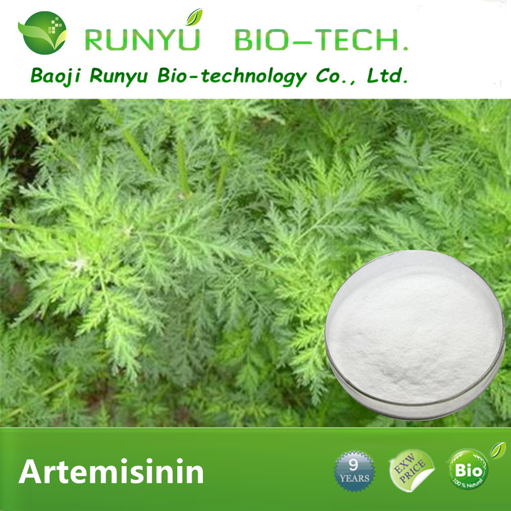 Pure natural product Wormwood Leaf P.E.,artemisinin 98% Artemisia Annua Extract