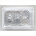 laboratory disposable plastic tissue culture plate