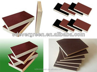 Film faced plywood for construction Okumo face Core poplar manufacturing company