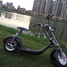 Citycoco fat tire lithium folding e bike adult electric motorcycle