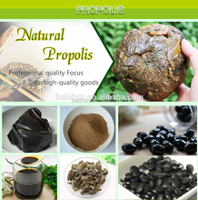 Most Popular Bee Products Propolis Extract Bulk Propolis Cheaper Than Brazil Propolis