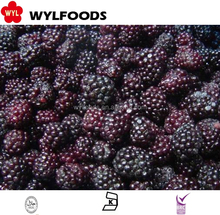Bulk Organic Fruit Frozen blackberries