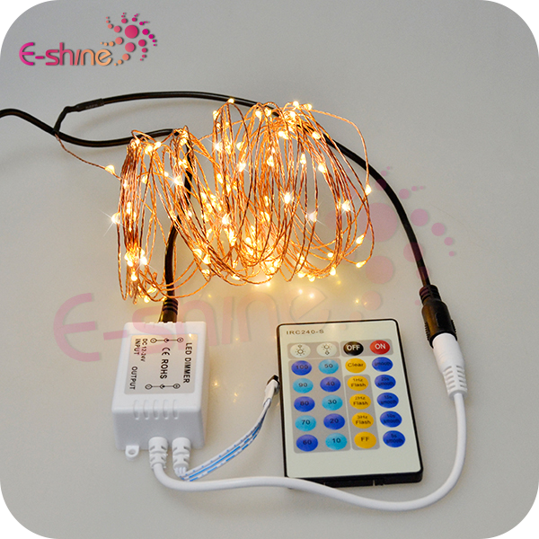 100 Warm White LEDs Waterproof Remote Control Led String Lights