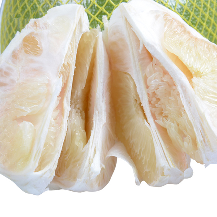 Competitive Price Golden Honey Fresh Pomelo