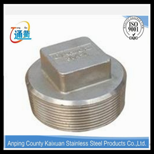 Threaded Stainless Steel Square Head Cap Plug