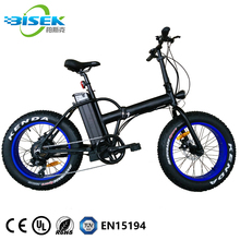 China E Bike Factory OEM Cheap Fastest 20'' Fatbike Electric Folding Bicycle