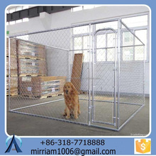 Good-looking Pet cages& dog crates& dog runs(Anping factory)