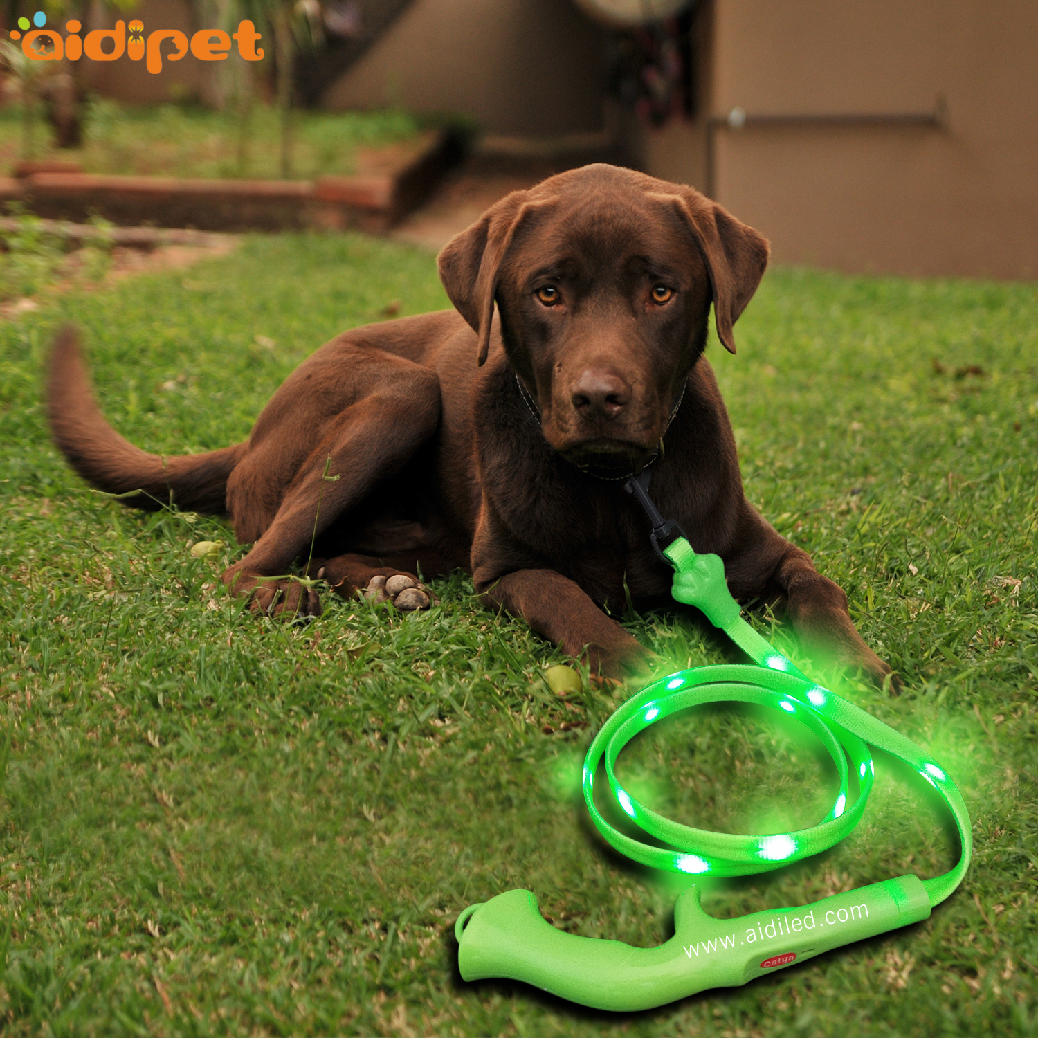 Led PVC flat Dog Leash USB rechargeable battery dot light style high light pet leash