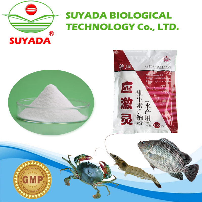 promotional China factory wholesale fish meal powder