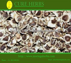 Indian Elite moringa seeds for exports