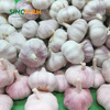 /product-detail/natural-garlic-for-russia-market-60339118365.html