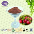 Organic, ISO, GMP, KOSHER, HALAL, (Imported Cranberry) Factory Supply Cranberry Extract 5%-25% Proanthocyanidins