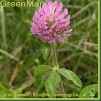 Competitive Price Red Clover Isoflavones/ Isoflavones 8% /Red Clover extract Isoflavones
