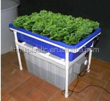 plastic growing trays plastic plant pots with wheels buy large size plastic plant pots outdoor. Black Bedroom Furniture Sets. Home Design Ideas