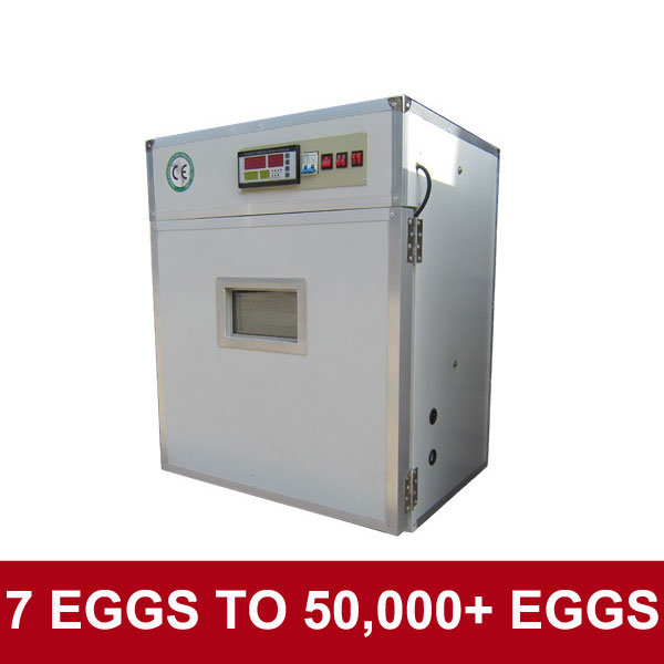 Promotional stock quality egg incubator for sale in chennai