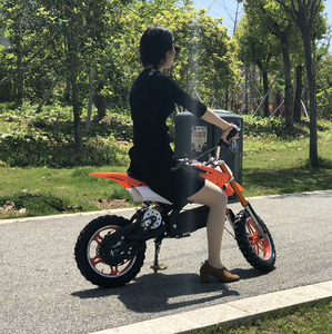 Cheap Electric Mini Dirt Bike 500W36V /Electric Bike