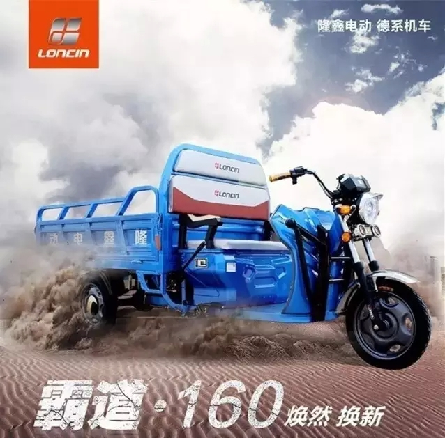 China Loncin adult cargo delivery electric tricycle/electric three wheel motorcycle