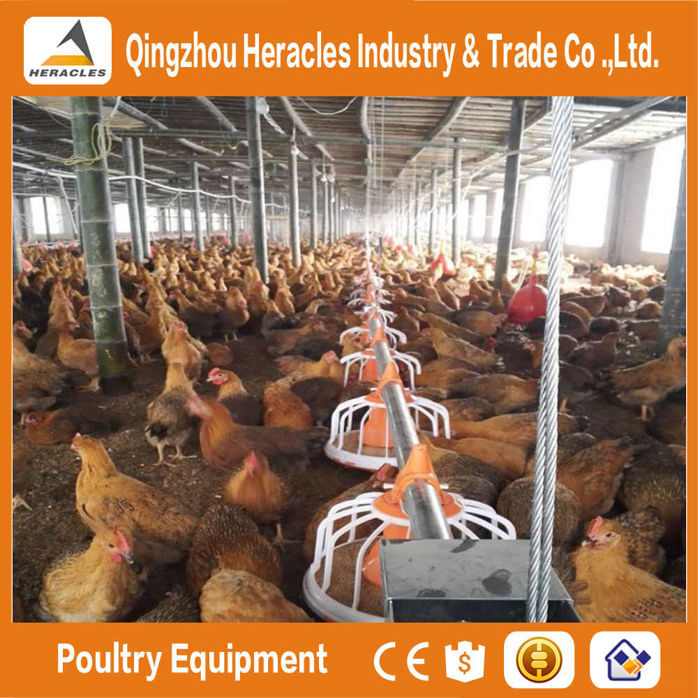 Alibaba Trade assurance equipment poultry chicken farming materials--flooring feeding and drinking equipment