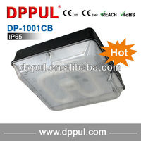 2016 Newest Rechargeable Ceiling Light DP1001CB Battery pack