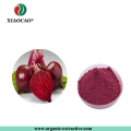 Gold Supplier Free Sample Healthcare Supplement Red Beet Juice Powder Beetroot Extract Beetroot Powder