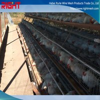 good quality and low price uganda poultry farm design chicken layer cage