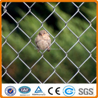 High quality galvanized removable chain link fencing