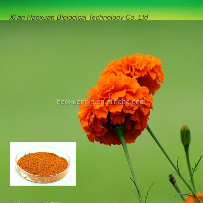 100% Natural Marigold flower extract 10% lutein