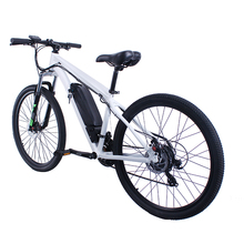 2018 New Design Customize E-Bike/Bicycle/Electric Bike with Hidden Battery