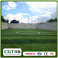 Smooth Synthetic Mini Football Field Artificial Grass for Football Pitch