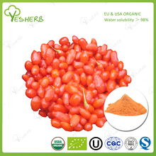 Top quality fruit the lycium chinese ningxia wolfberry extract