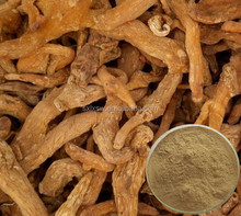 P factory supply Hot sale Siberian Solomonseal Rhizome P.E.