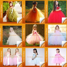 Wholesale hot sale Girls birthday tutu dress to kids flower tulle puffy dress for kids tutu dress Lyd-1005