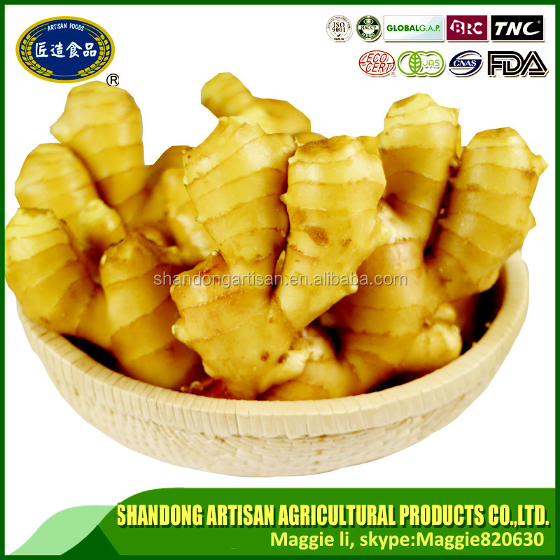 China factory sale good and cheap price of new crop ginger Professional