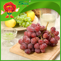 Fruits fresh chinese red globe grapes