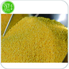 Best Yellow Millet From Yanan China