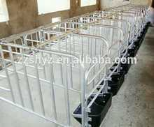 New design pig farm equipment farrowing crate Manufactory