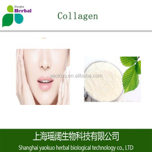 Pure high quality marine Collagen