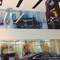 Professional Eco-solvent ink perforated vehicle window graphics