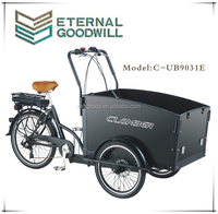 2015 hot sale three wheel electric Cargo Bike/Electric tricycle model UB9031E-6S