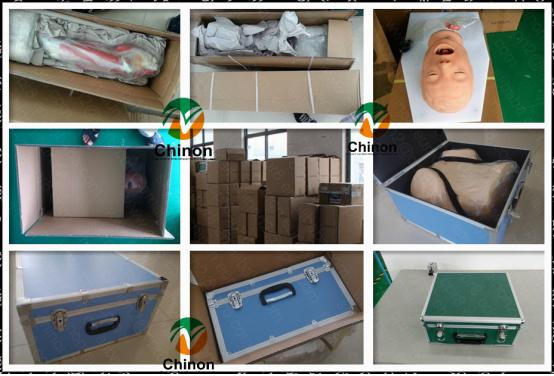 Durable bone marrow puncture standardized manikin, training model