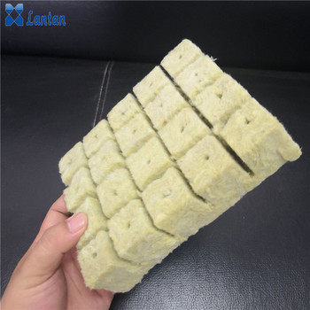 Agriculture grow rock wool cubes
