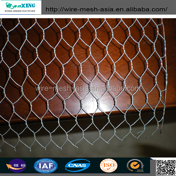 Galvanized Poultry Netting Chicken Safety Wire Fence Net