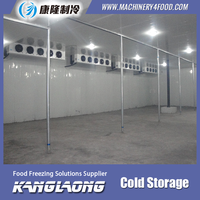 China Factory Professional Cold Room Refrigerator Freezer