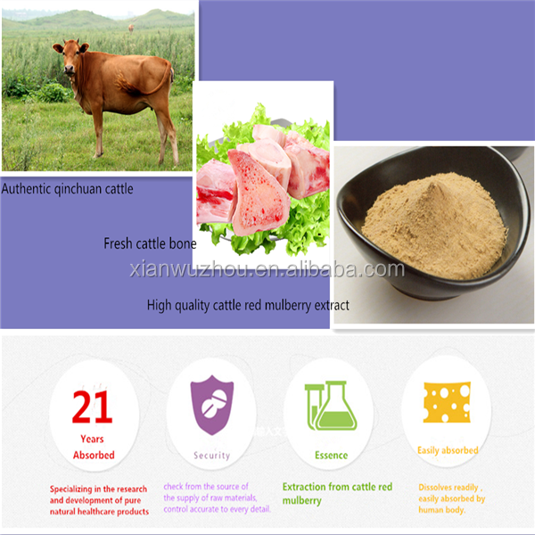 GMP Manufacturer Natural Pure cattle bone Collagen for bone density improve and skin care