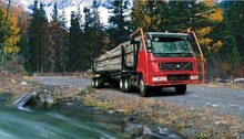 Euro 2 336-420hp 6*4 Log Transporter Truck