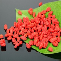 natural 50% polysaccharides goji berry extracts barbary wolfberry P.E