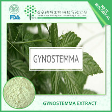 low price jiaogulan extract/gynostemma pentaphyllum extract 10:1 free sample