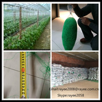 climbing net vegetables trellises/Plant Support Net ,Garden Bean Netting stretch plant net,apoio planta net apoio planta net