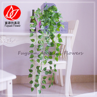 150512 factory direct sale decorating wedding halls evergreen ornamental plants